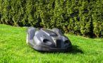 Траву вдоль федеральных трасс Ставрополья будут косить роботы-косилки