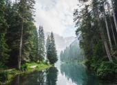 В реке Изяк восстанавливается фауна, качество воды вернулось к норме
