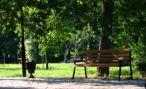 В 2020 году в Пятигорске благоустроят Эммануэлевский парк