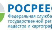 Официально: глава Краснодара ошибочно в 300 раз завысил стоимость земли «Сафари парка»