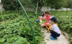 Какую поддержку может предложить государство фермерам для развития экологического туризма